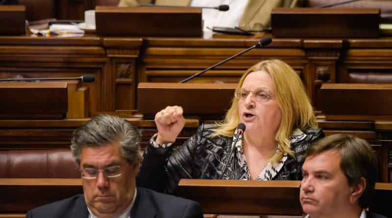 """Diputada Bianchi: """"hay una cruzada estratégica para desarticular a las Fuerzas Armadas"""""""